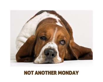 not another monday